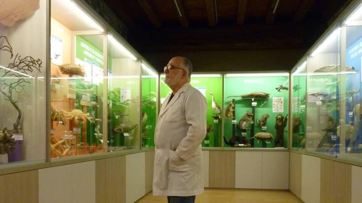 Laster zabalduko dute natura-zientzien Hontza museoa
