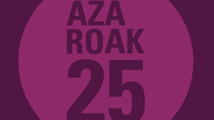 Azaroak 25: Indarkeria sexistaren kontrako eguna