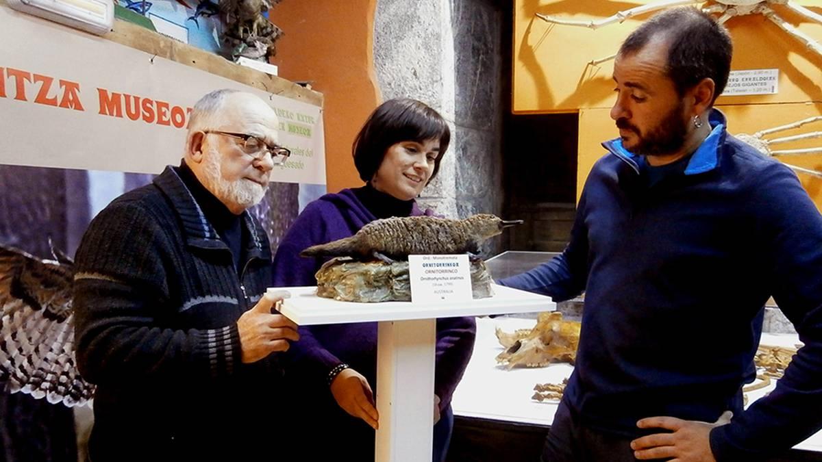 Ornitorrinkoa, Mañariko Hontza museoko harribitxi berria